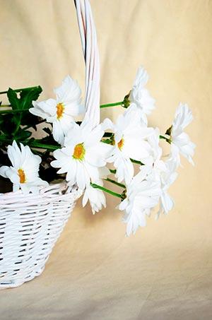 coronas de flores Tanatorio Servisa Madrid