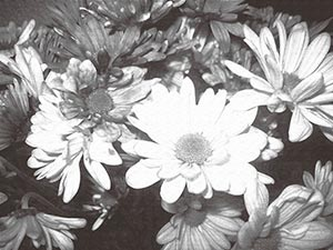 coronas de flores Tanatorio Villa Del Prado